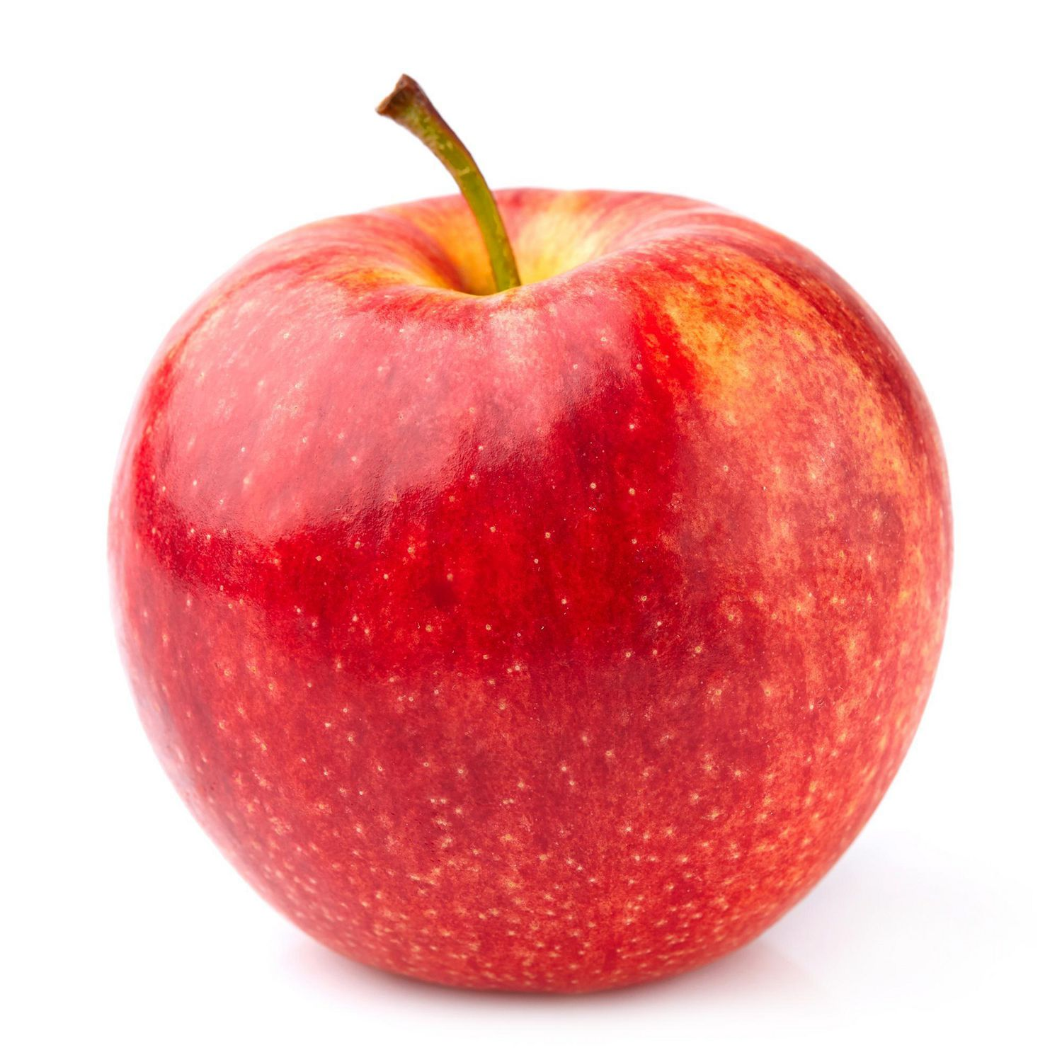 grow apples from seed