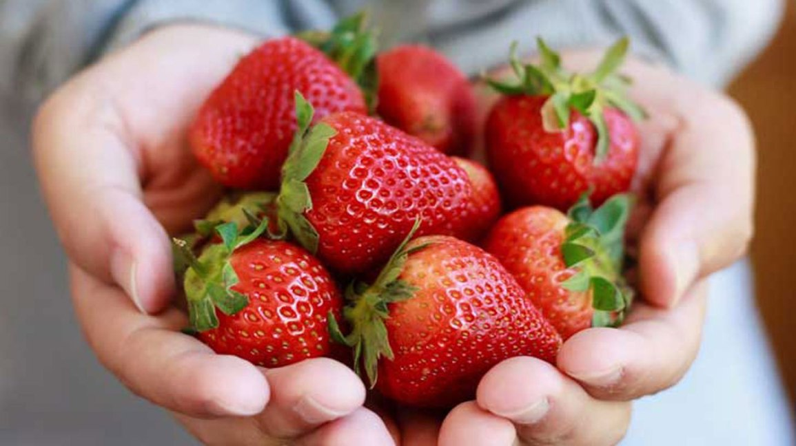 Strawberries 101: Nutrition Facts and Health Benefits