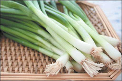 How To Regrow Green Onions | Veggie Gardener