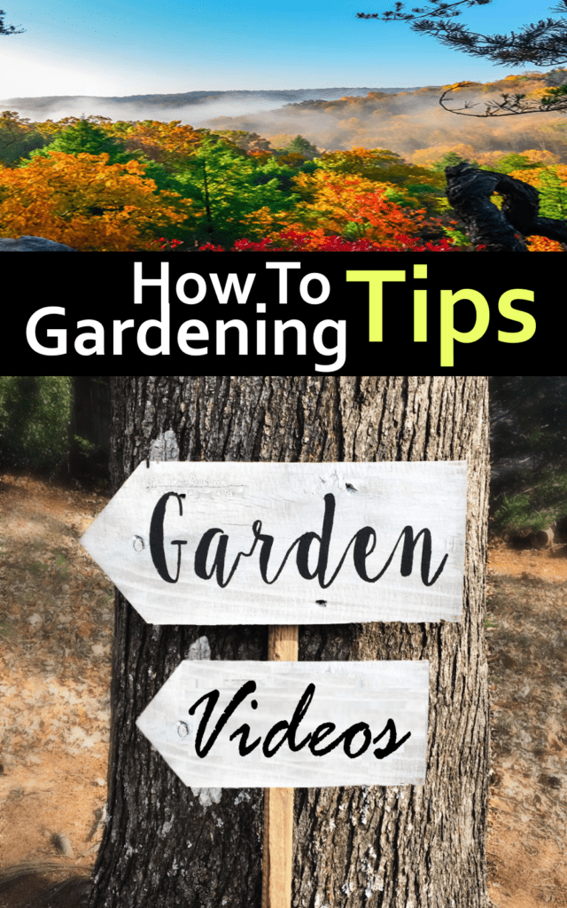 gardening how to videos